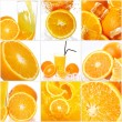 Collage of different orange fruits