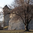 thumbnail of Buda castle_f