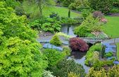 Lush spring garden