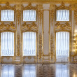 Постер, плакат: The windows of the hall of gold