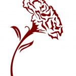 ������, ������: Carnation flower