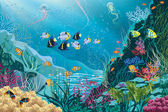 Underwater landscape with various water plants and swimming tropical fishes All objects are grouped EPS8