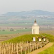 thumbnail of Chapel with vineyard near Velke Bilovice, Czech Republic