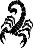 Vector image of the scorpion