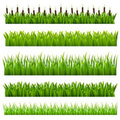 Set from grass of green border(can be repeated and scaled in any size)