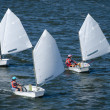 thumbnail of Sailing boat competition
