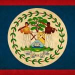 thumbnail of Belize grunge flag