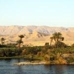 thumbnail of Africa, egypt, nile cruise