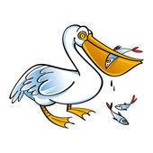 Pelican with Fish food bird fauna