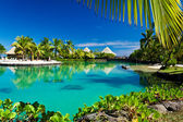 Resort tropical con una laguna y palmeras verdes
