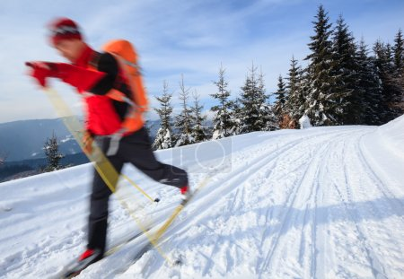 Постер, плакат: Cross country skiing: young man cross country skiing, холст на подрамнике