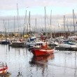 thumbnail of Fishing boats moored at the port