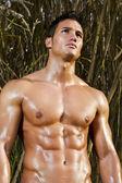 Mužský model s svaly na venkově
