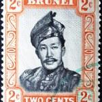 Постер, плакат: BRUNEI CIRCA 1958: A stamp printed in Brunei shows Sultan Omar Ali Saifuddin circa 1958