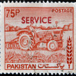 thumbnail of PAKISTAN - CIRCA 1970: A stamp printed in Pakistan shows wom