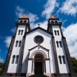 thumbnail of The catholic church