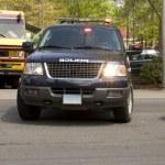 thumbnail of Police SUV