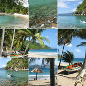 Montage of tropical island
