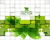 Abstract shine green leaf mosaic background vector illustration