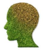 Onemocnění mozku a duševních chorob