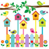 Collection of colorful birds and birdhouses