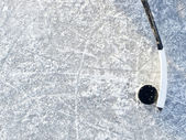 Hokejka a puk