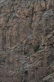 Person rockclimbing impressive mountain rock wall