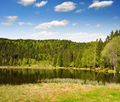 Bavarian Forest - Germany