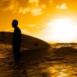 thumbnail of Surfer silhouette