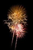 Helle Feuerwerk explodiert