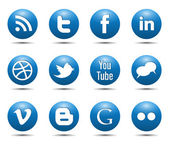 Blue social media icons glossy buttons vector