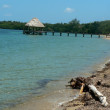 thumbnail of Beautiful beach, belize