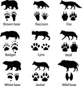 Animals and its tracks Vector illustration