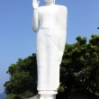 thumbnail of Big Buddha Statue, Sri Lanka