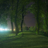 Path through park at night