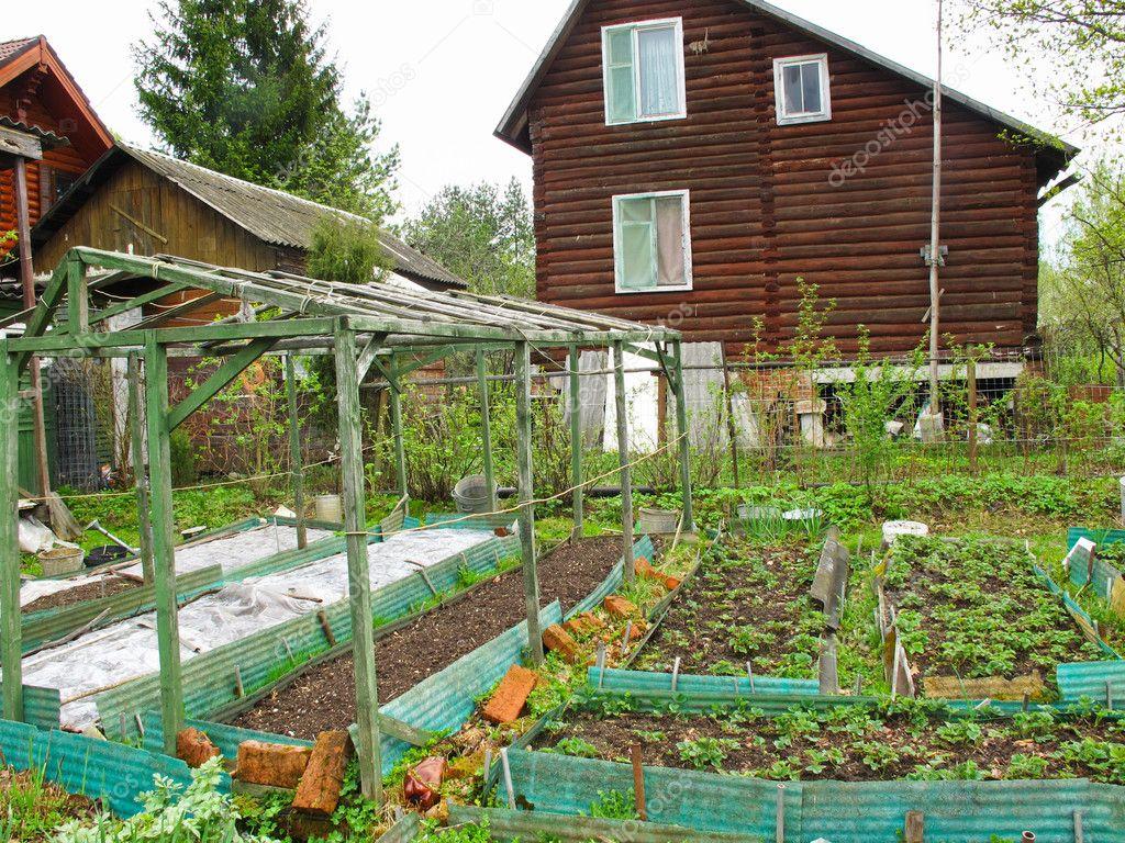 Spring kitchen garden