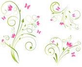 Fényképek Florals formatervezési minták és a pillangók