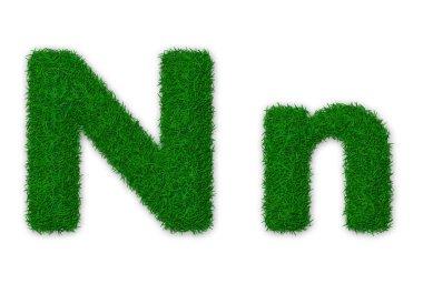 Grassy letter N