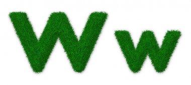 Grassy letter W
