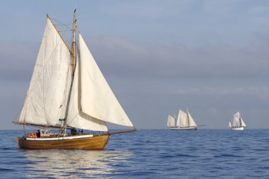 Tender with white sails