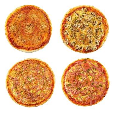 Four different pizzas