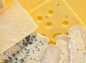 Různé druhy sýrů