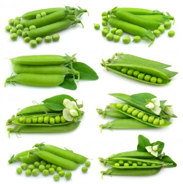 Collection of fresh green pea