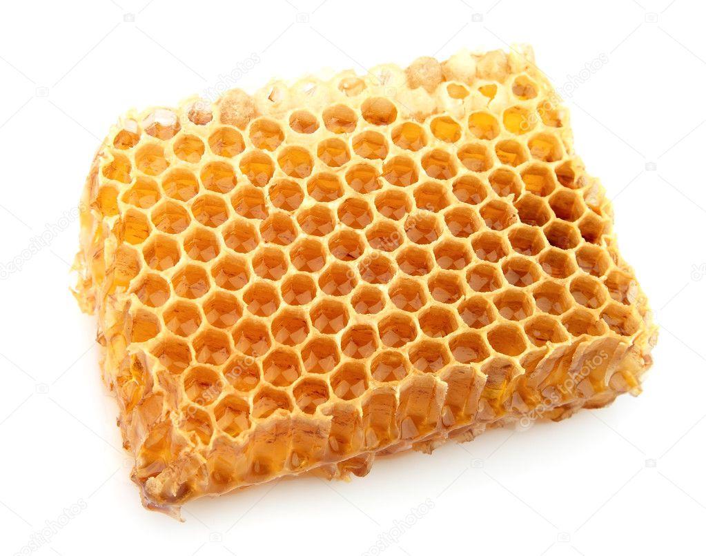 Honeycomb close up