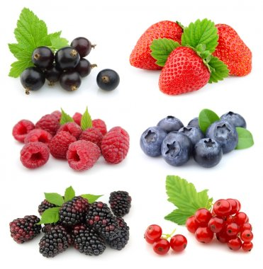 Collection of sweet berries