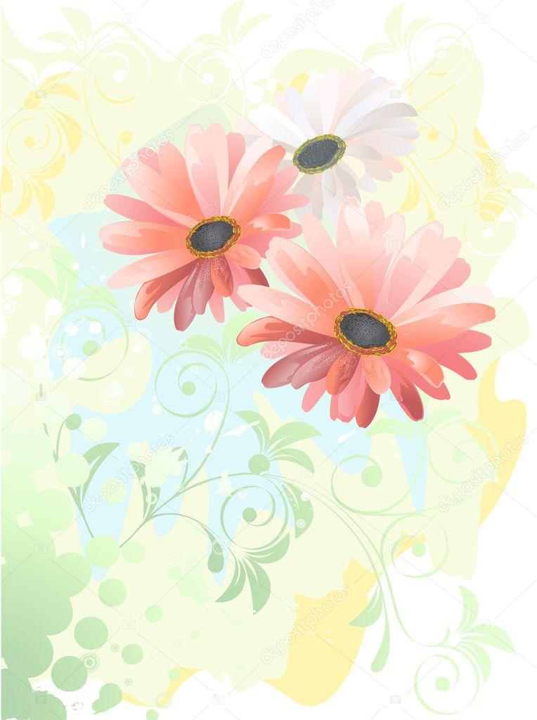 Gerbera Akvarel Kresba Stock Vektor C Ishmel 8841604