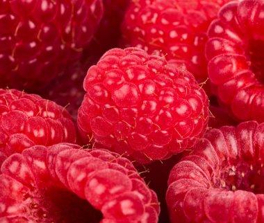 Raspberry. food background
