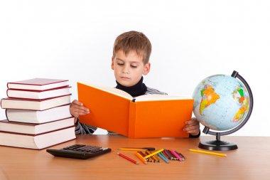Cute schoolboy is reading a book
