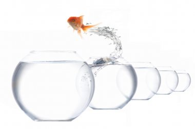 Jumper-fish