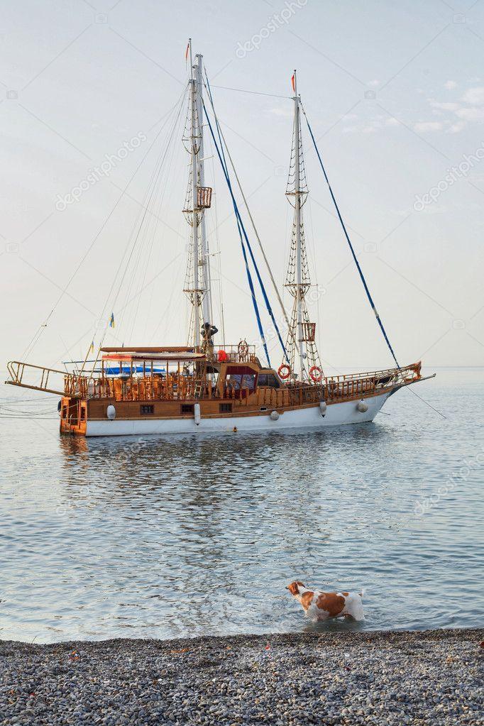 Vintage frigate